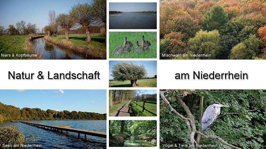 Niederrhein Natur