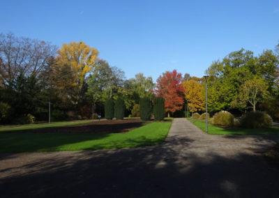 Bunter Garten MG