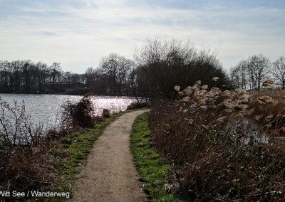 De Witt See