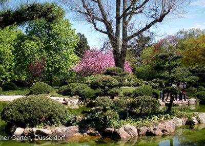 Japanischer Garten Düsseldorf
