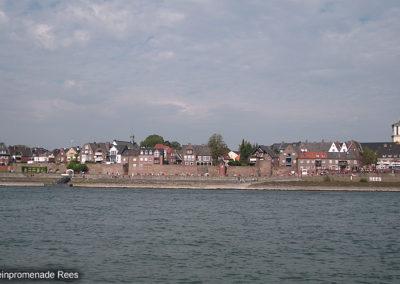 Rhein bei Rees