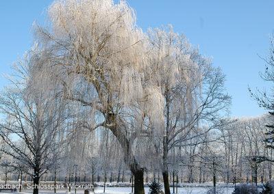 Schlosspark Wickrath