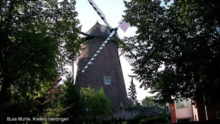 Buss Mühle