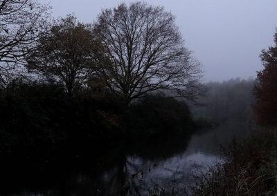 Phänomen Nebel